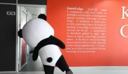 SKEMA开启线上直播 团宠熊猫带你突袭课堂